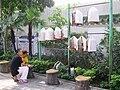 HK YuenPoStreetBirdGarden birdwatch.JPG