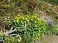 Haddon Hall, Bakewell, UK - panoramio (7).jpg
