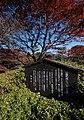 Hakone – Japan (4118913619).jpg