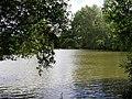 Hale Common fishing lake - geograph.org.uk - 500753.jpg