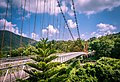Hanging Bridge Of Athirappally (212671083).jpeg