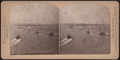 Harbor from New York and Brooklyn Susp. Bridge, from Robert N. Dennis collection of stereoscopic views.png