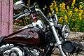 Harley-Davidson Dyna Super Glide Custom, Diddeleng-102.jpg