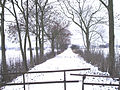 Haseldorfer Marsch 36.jpg