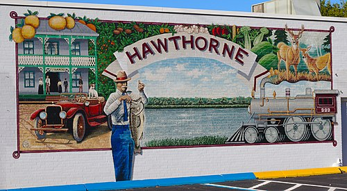 Hawthorne chiropractor