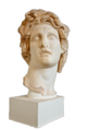 Head Helios AM Rhodes E49 (bust only).png