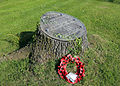 Hellmans Cross, Great Canfield, Essex, England - Peace Oak.JPG