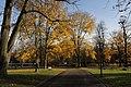 Herbst im Westfalenpark - panoramio (3).jpg