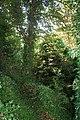 Hidden ditch - geograph.org.uk - 918372.jpg