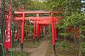 Higashi Fushimi Inari Shrine(East Fushimi Inari Shrine) - 東伏見稲荷神社 - panoramio (14).jpg