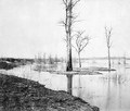 High Water on Red River near Dufferin Spring.png