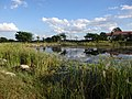 Hilton garden - panoramio (1).jpg