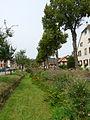 Hirtzbach-Ruisseau (2).jpg