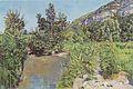 Hodler - Teichlandschaft bei Veyrier, ca1890.jpg