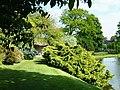 Hodnet Hall Gardens - geograph.org.uk - 10941.jpg