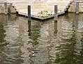 Homomonument, Amsterdam (4).jpg