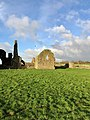 Hore Abbey, Caiseal, Éire - 46585658191.jpg