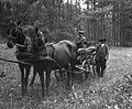 Horse-drawn carriage, carriage, coach Fortepan 7170.jpg