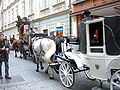 Horses & carriages in Prague 2004-10.JPG