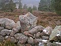 Hurdle support stone - geograph.org.uk - 340009.jpg