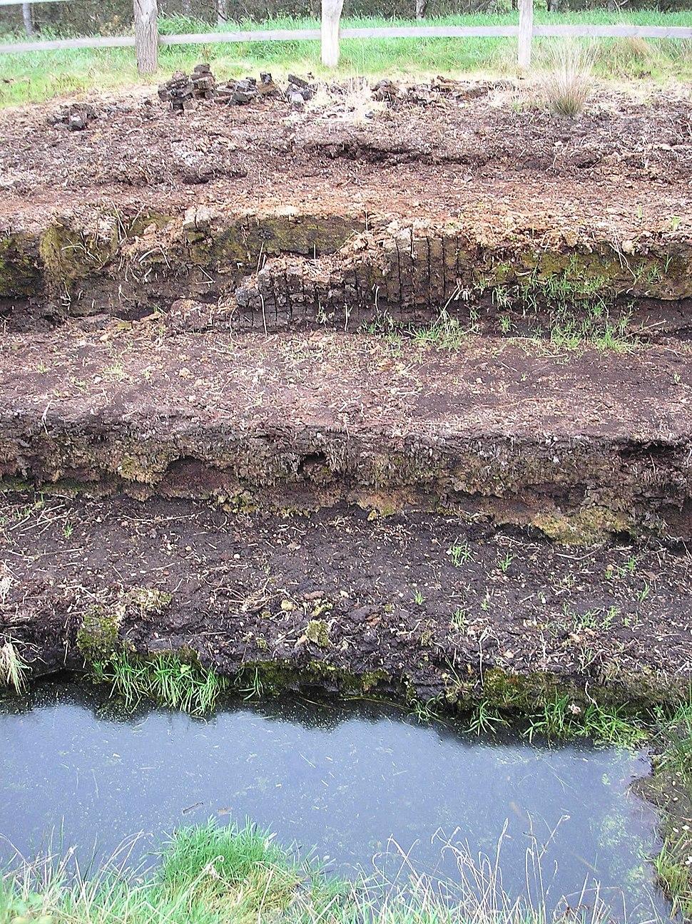 Huvenhoops Moorschichtung