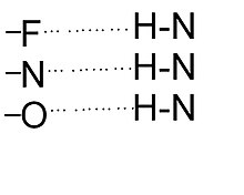 Structural Biochemistry/Chemical Bonding/Hydrogen bonds