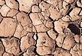 ISR-2016-Makhtesh Ramon-Cracked earth 02.jpg