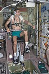 ISS Expedition 7 Malenchenko on cycle ergometer.jpg