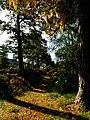 I Like It - panoramio (1).jpg