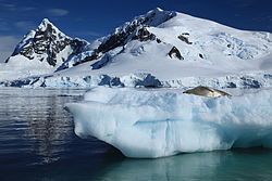 Iceberg with Crabeater Seal in Paradise Harbour, Antarctica (6087880422).jpg