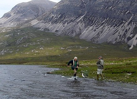 Angler and gillie land a salmon, Scotland In the net^ - geograph.org.uk - 98595.jpg
