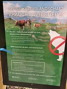 Schild mit Argumenten gegen den Wolf in der alpinen Kulturlandschaft