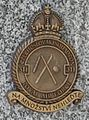 Insignie.311.CS.perut.RAF.jpg