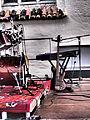 Instrumente (Live-Talente 2014) (10).jpg