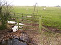 Interesting Steel Stile at corner of Sheep Wash Wood - geograph.org.uk - 1588575.jpg