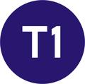 Istanbul Line Symbol T1.png