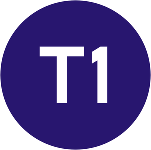 Trams in Bursa - Image: Istanbul Line Symbol T1