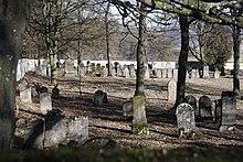 Neuer Friedhof Harburg