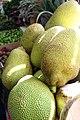 Jackfruit in a Tijuana market 5490.jpg