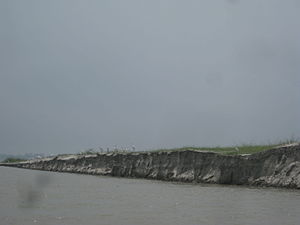 Jamuna River Bogra, Bangladesh 01