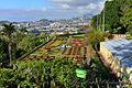 Jardim Botânico, Madeira (15967435763).jpg