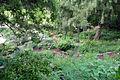 Jardin alpin1.jpg