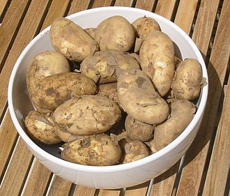 Jersey Royal - 'Jersey Royals', boiled with the thin skins left on