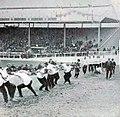 Jeux Olympiques de 1908, finale de tir à la corde, victoire de la City Police sur la Liverpool Police.jpg