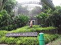 Jurong BirdPark 125.JPG