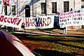 Justice rally - Occupy Harvard.jpg