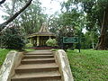 Kandi jardin botanique de Peradeniya (le parc) (7).JPG