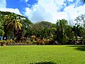 Karibik, St. Kitts - Romney manor - Botanical Garden - panoramio.jpg