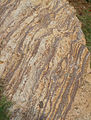 Khondalite rocks at Tenneti park beach Visakhapatnam.JPG