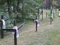 Kijów-Bykownia - panoramio (3).jpg